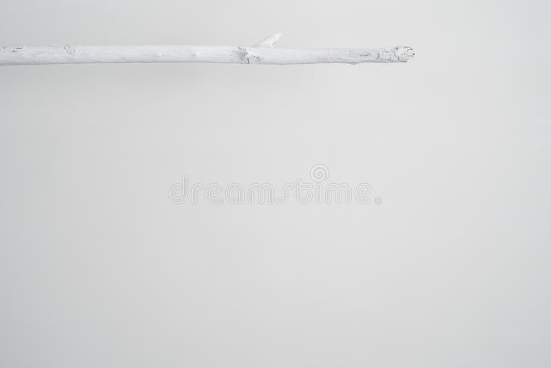 An Elevated Painted White Twig. Or stick stock photos