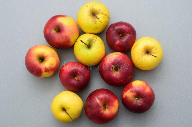 Elf appelen op de lijst stock afbeelding