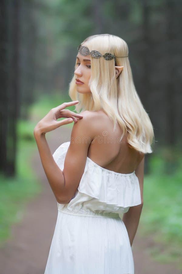Elf.beautiful girl stock images