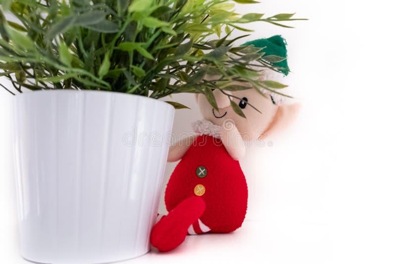 Elf de Santa se cache dans la cuisine photo stock