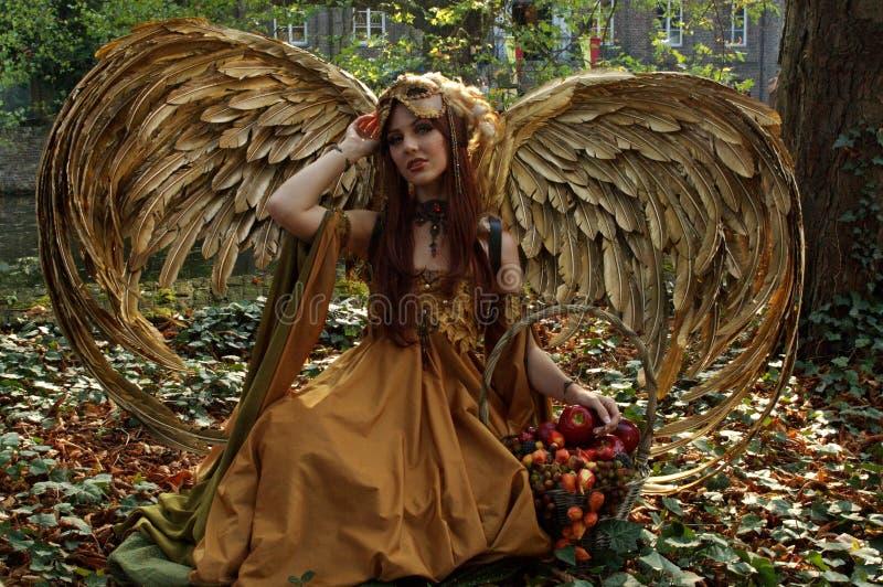 Elf fairy tale royalty free stock photo