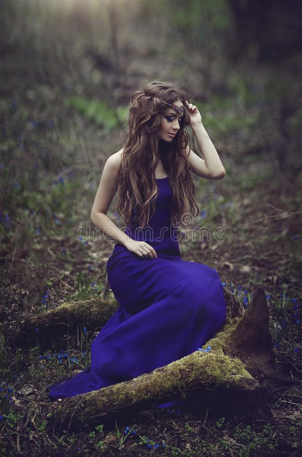 Elf girl with long hair and blue eyes in the tiara and a long blue dress sitting on a stump in the spring . Girl. Princess dreams. Creative colors and Artistic royalty free stock image