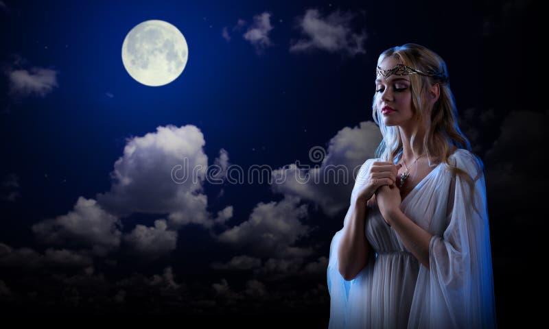 Elf girl on night sky background royalty free stock image