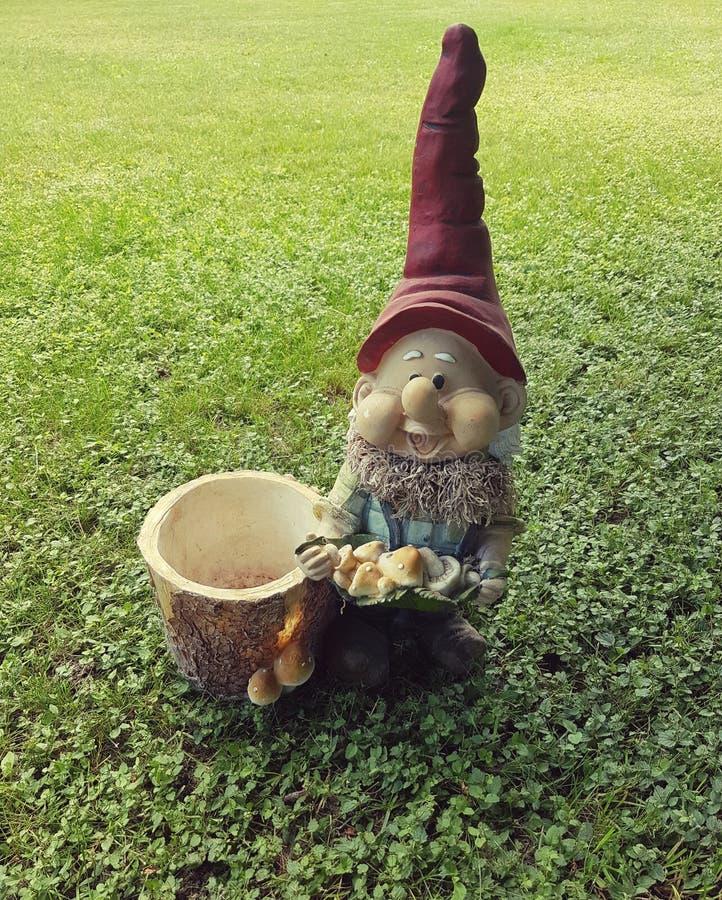 Elf o trawniku zielonym obraz royalty free