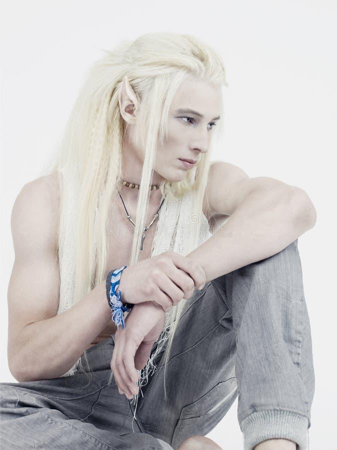 elf przystojny zdjęcie royalty free