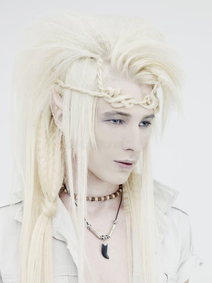 elf przystojny zdjęcie stock