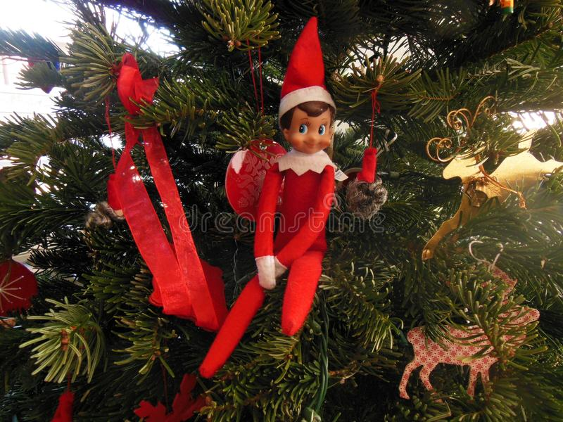 Elf on the Shelf. Is a tradition in our home. Here we see him sitting on the Christmas Tree