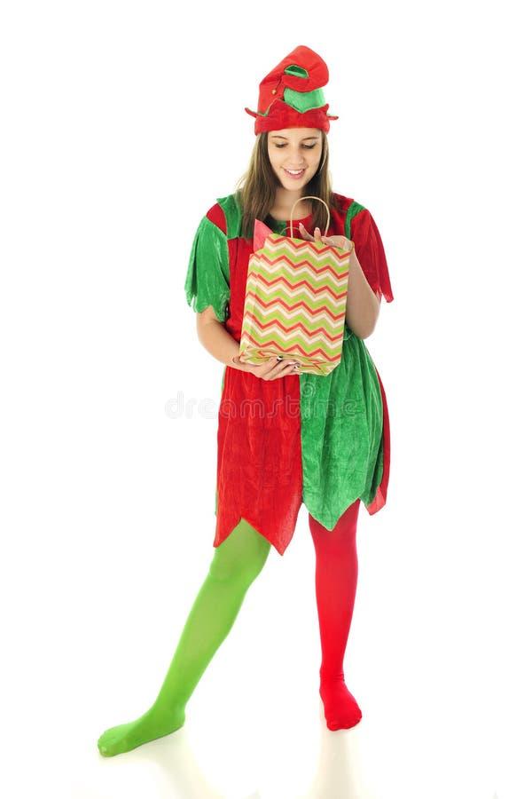 Elf Sprawdza prezent torbę zdjęcia royalty free