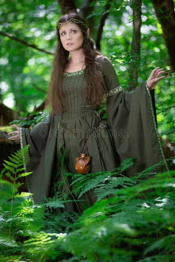 Elf woman in a green dress royalty free stock image