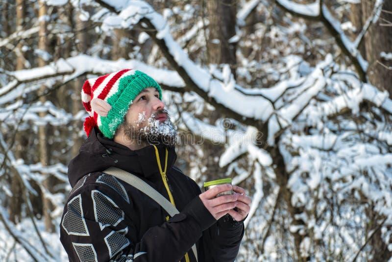 elfe Neige-barbu de Noël tenant une tasse de thé chaud et recherchant photos libres de droits