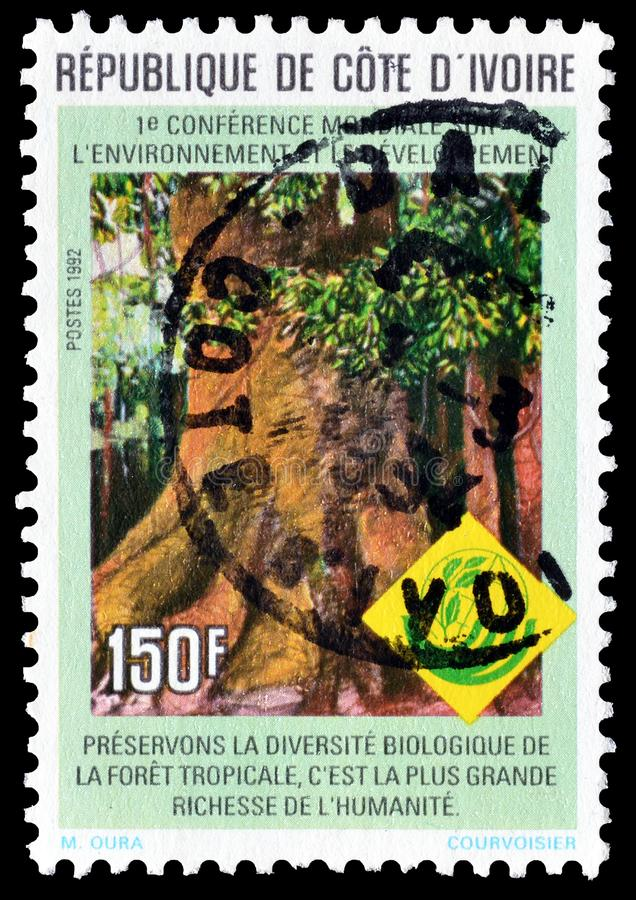 Elfenbenskust p? portost?mplar royaltyfria bilder
