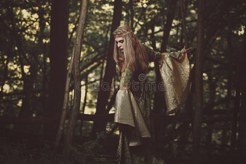 Elfendame, die in den Wald geht lizenzfreie stockfotografie