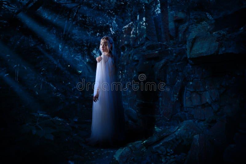 Elfenmädchen im Nachtwald stockfotos