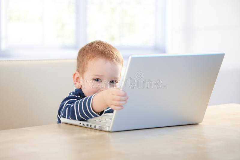 Elfish kid playing with laptop. Elfish little kid playing with laptop at home, sitting at desk stock photos