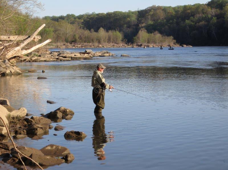 Elft die op Potomac vist stock foto's