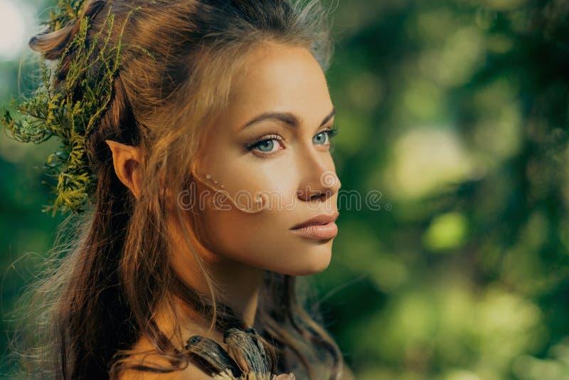 Elfvrouw in een bos stock foto's