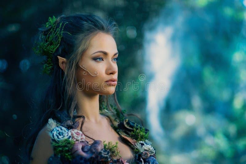 Elfvrouw in een bos stock afbeelding