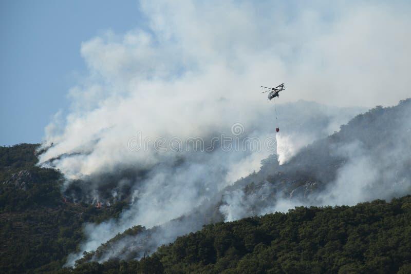 Elicottero che estingue l'incendio forestale nel Montenegro fotografia stock libera da diritti
