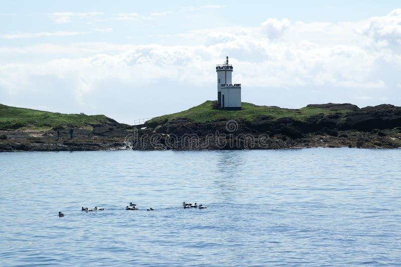 Elievuurtoren, Schotland royalty-vrije stock afbeeldingen