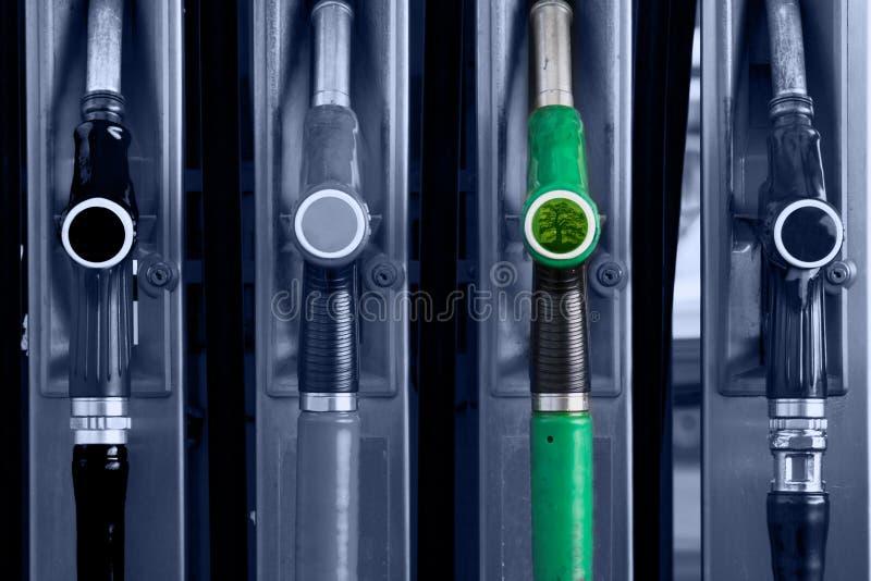 Elija el verde. imagen de archivo libre de regalías