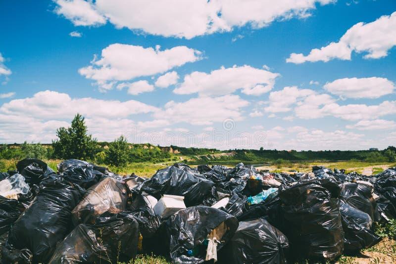 Eliminación de residuos en naturaleza foto de archivo