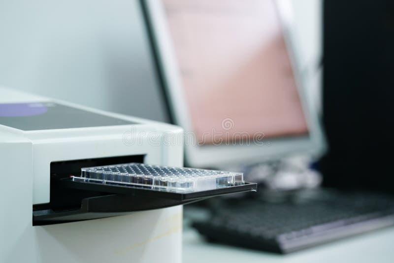 ELISA-platta som mäter OD med microplateavläsaren arkivfoto