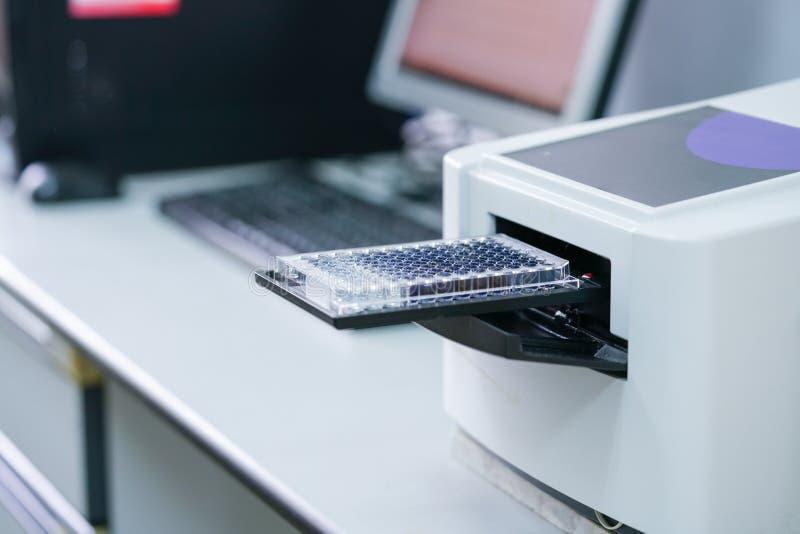 ELISA-platta som mäter OD med microplateavläsaren arkivbilder