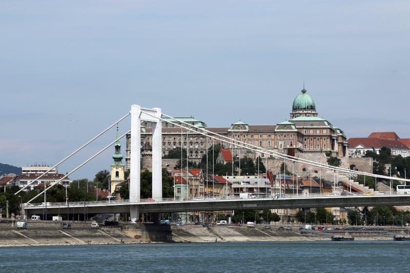 Elisabeth most na Danube rzece obraz royalty free