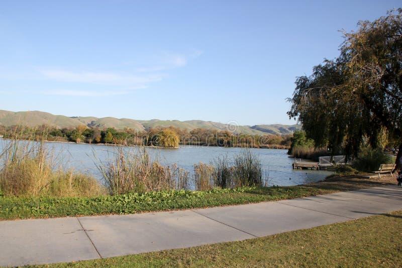 Elizabeth湖,中央公园,佛瑞蒙,加利福尼亚 免版税库存图片