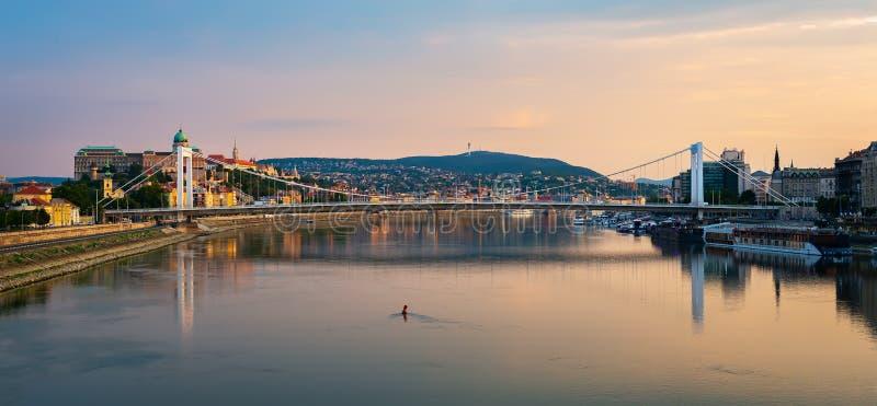 Elizabeth-Brücke auf Donau lizenzfreie stockbilder
