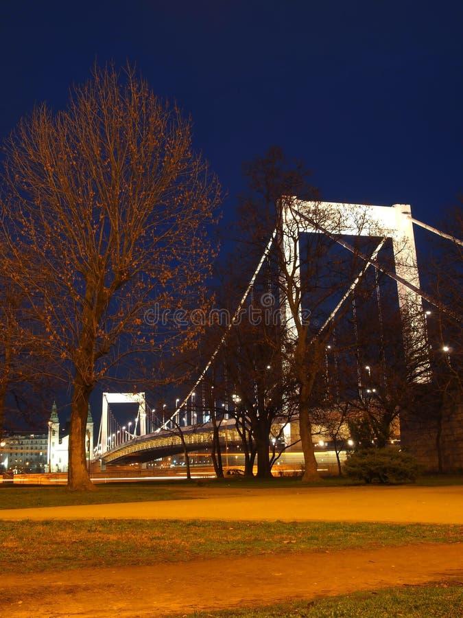 Elizabeth Bridge royalty-vrije stock fotografie