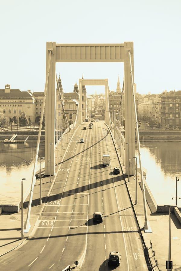 Download Elizabeth Bridge, Budapest In Golden Color Royalty Free Stock Photography - Image: 24948397