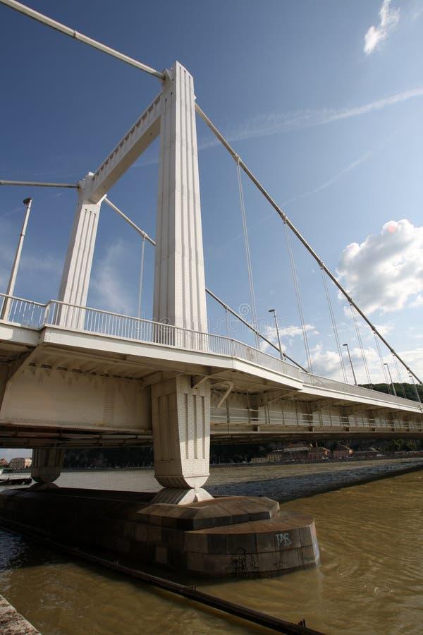 Download Elizabeth Bridge  (in Budapest In Hungary) Stock Image - Image: 11117181