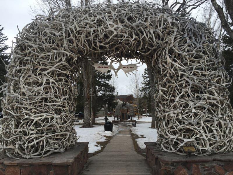 Elk Antler Arch stock photos