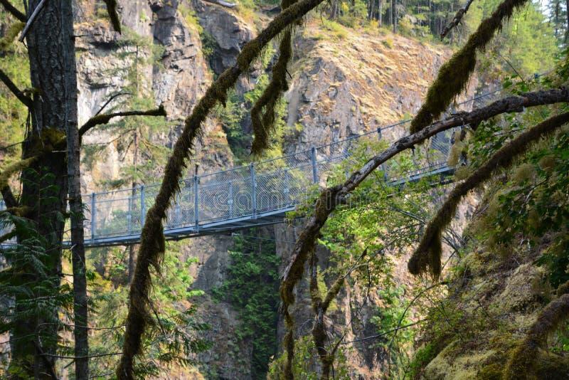 Elk falls provincial park Campbell River. Amazing suspension bridge in Elk Falls provincial park Campbell River Vancouver island stock photos