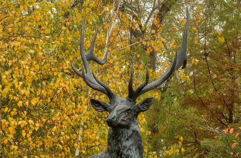 Elkhart Indiana Full Size Bronze Scultpture of a Majestic 6 x 6 Elk. Full size bronze sculpture of a majestic 6x6 bull elk of which this small Indiana town is stock photography