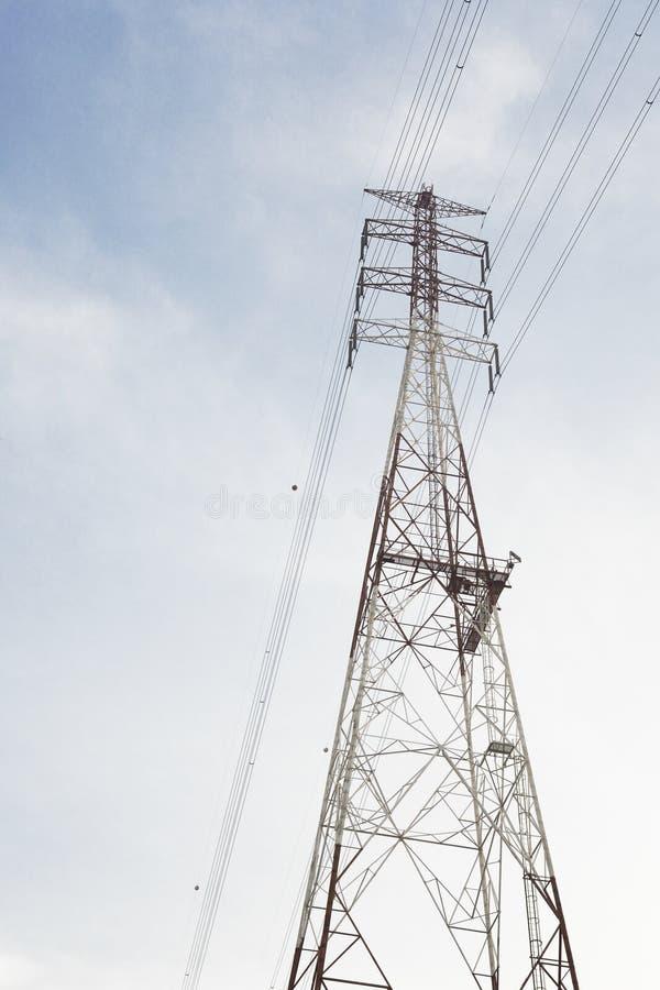elkraften lines strömöverföringen fotografering för bildbyråer
