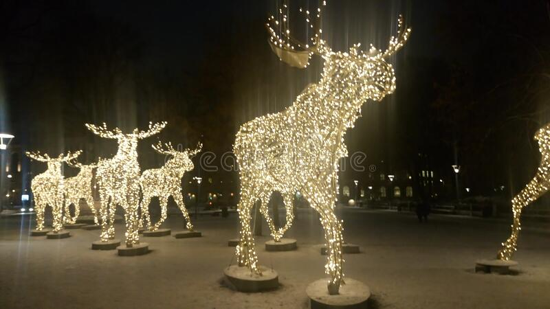 Elks made of lights royalty free stock photo