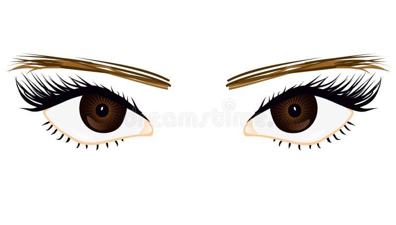 Ella ojos libre illustration
