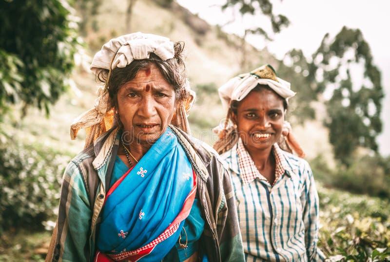 Ella, Sri Lanka - December 30, 2017: Oude dag vrouwelijke thee-plukker p stock afbeelding