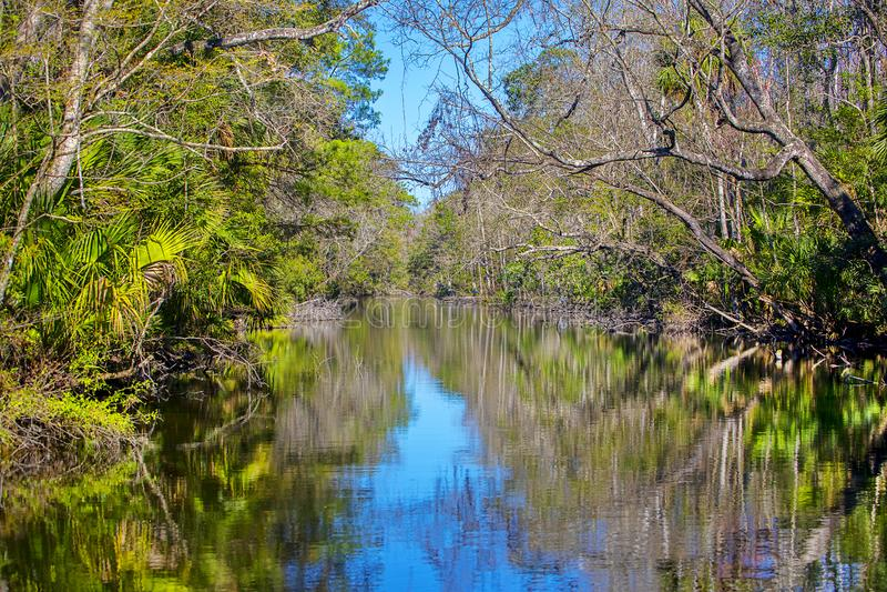 Ellie Schiller Homosassa Springs Wildlife State Park. River at Ellie Schiller Homosassa Springs Wildlife State Park in Florida stock photography