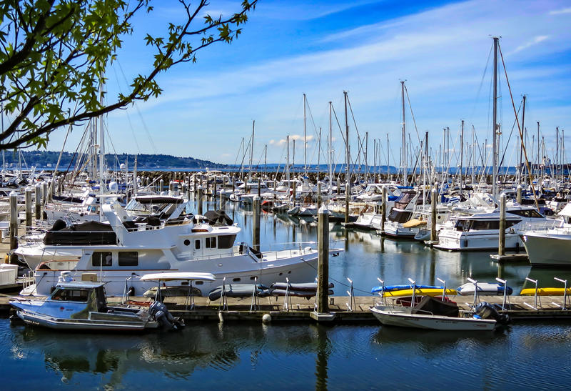 Elliot Bay Marina stock image