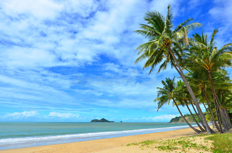 Ellis beach in Cairns Queensland Australia stock photo