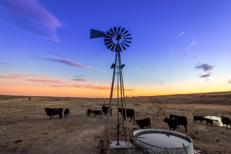 Ellis County, KS USA - Traditional Wind Mill on a Midwestern Cattle Farm at Sunset. Traditional Wind Mill on a Midwestern Cattle Farm at Sunset royalty free stock images