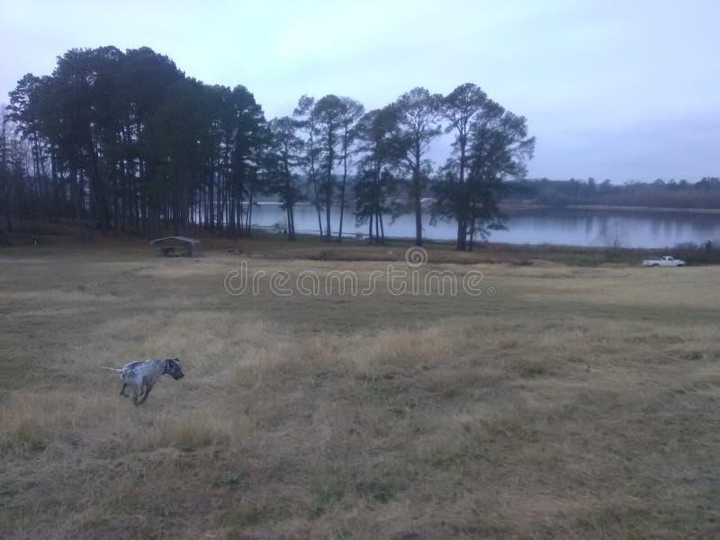 Ellison Creek Reservoir stock image