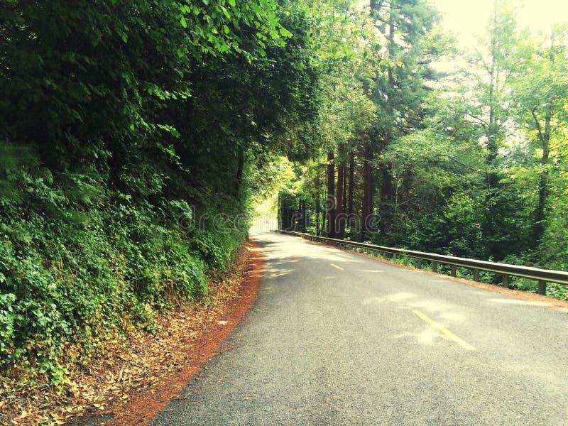 Elma Hills imagenes de archivo