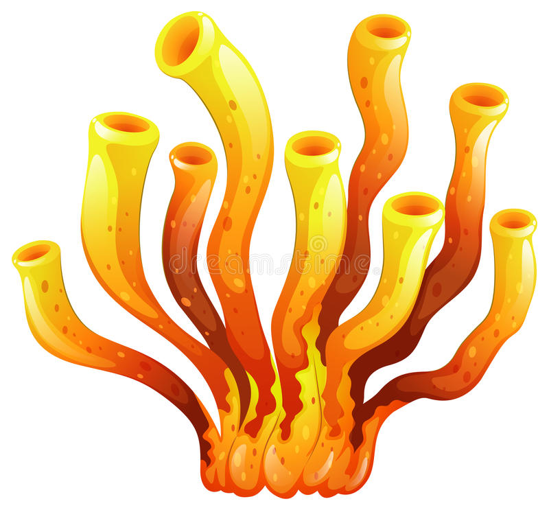 An Elongated Coral Stock Illustration. Illustration Of