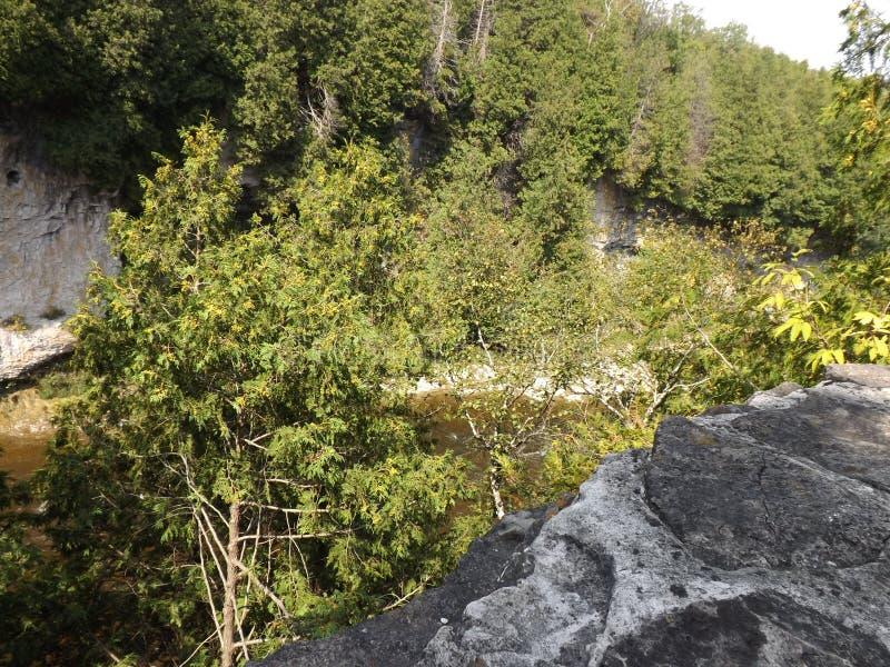 Elora峡谷 免版税库存图片
