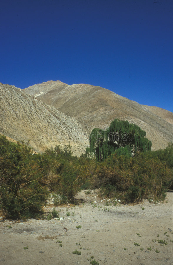 Elqui Valley or Valle del Elqui stock photography