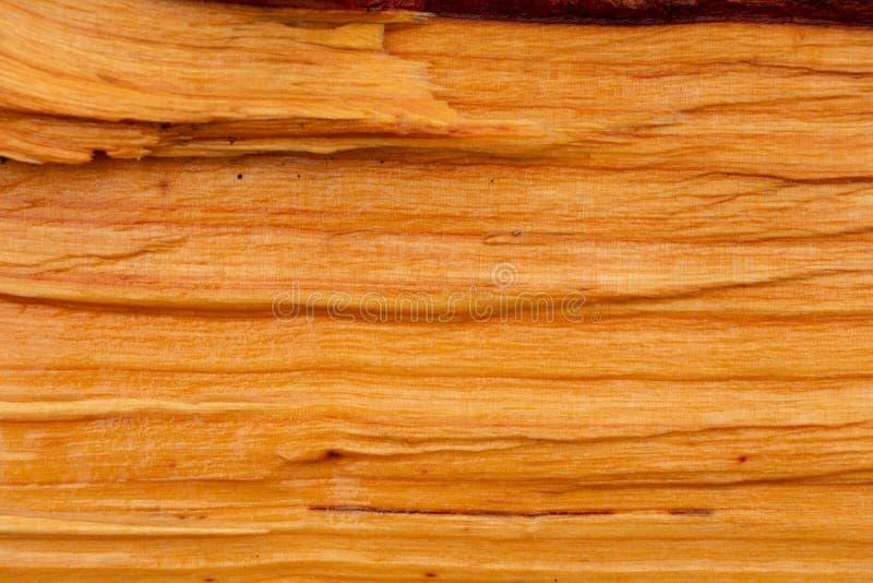 Els met natuurlijke oranje houten kleur stock foto's
